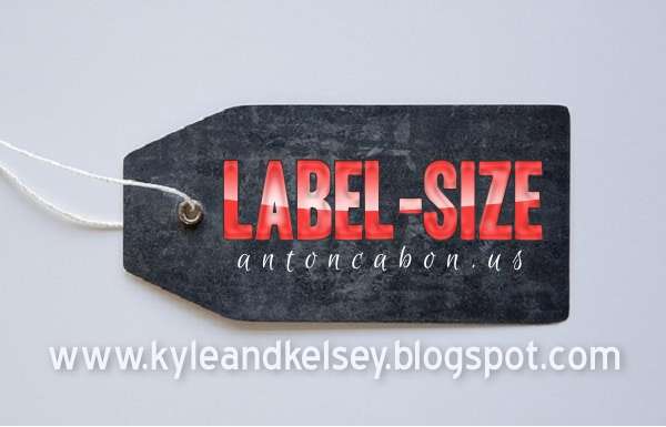 Memodifikasi Tampilan Label-Size Pada Blog