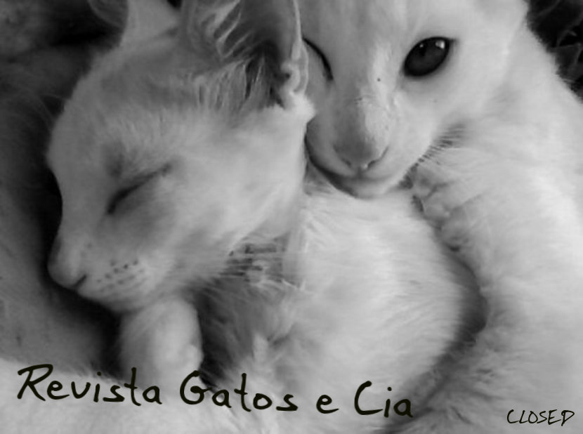 Revista Gatos e Cia