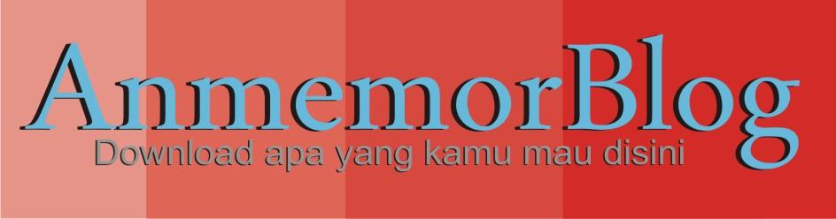 anmemor blog