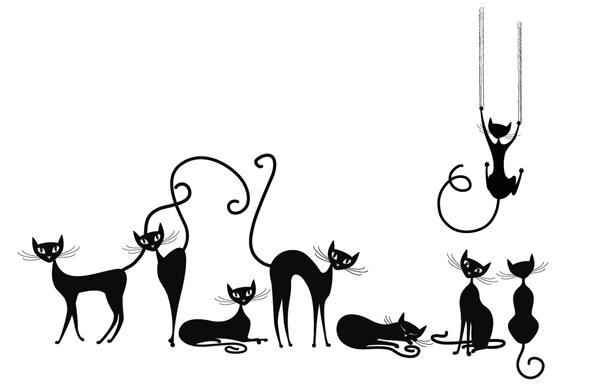 Gaelle Grisard Le Chat Noir
