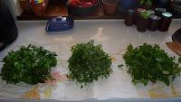 umyte zioła