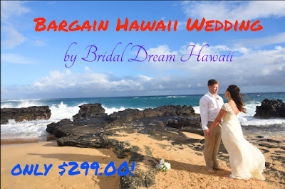 Affordable Hawaii Weddings