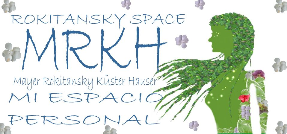 ROKITANSKY SPACE