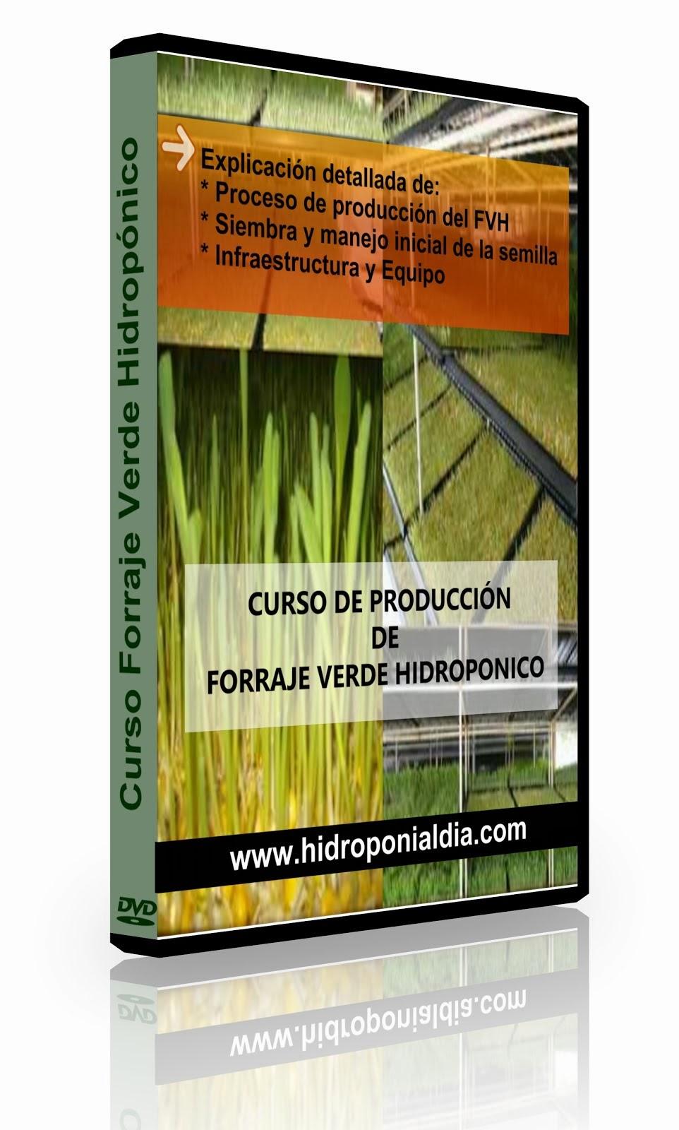 Curso Producción Forraje Verde Hidroponico
