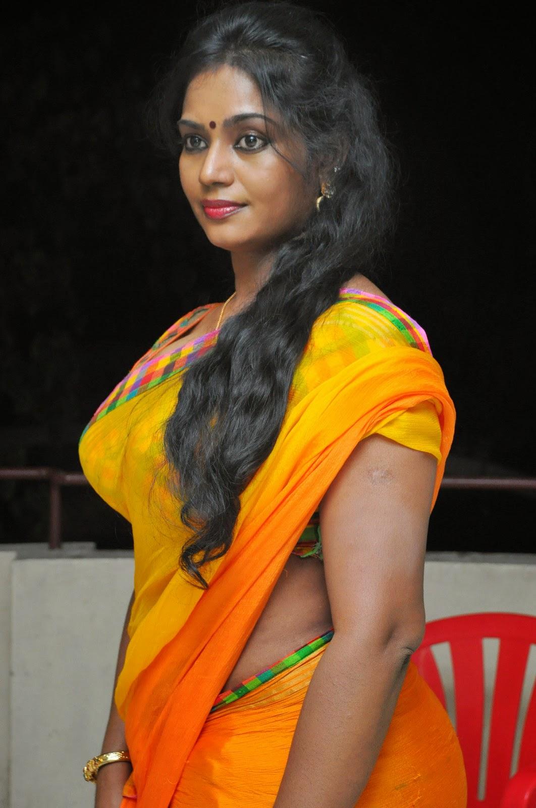 Jayavani glam pics in saree-HQ-Photo-12