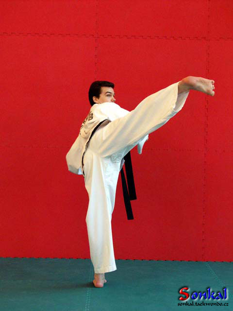tae kwon do essay Breaking essay: leadership: tae kwon do and my life 4 hour tangible goal system, the black belt curriculum this curriculum provides short and long term goals.