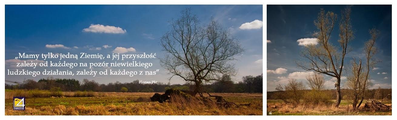 W kontakcie z naturą - klasy ekologiczne Gimnazjum nr 4 w ZSŁ Poznań