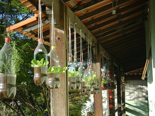 horta e jardim vertical : horta e jardim vertical: , Decoração, Estilo, Dicas e Lifestyle: Jardins e hortas verticais