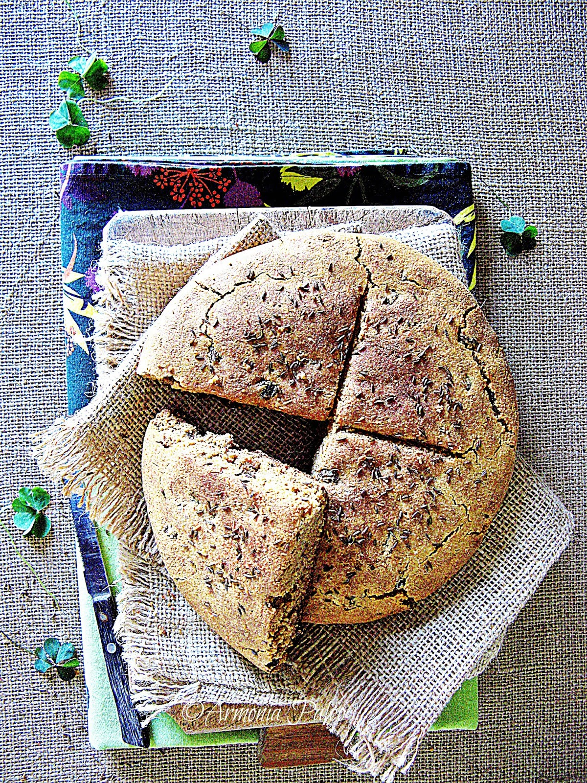 Irish Soda Bread - Pane Irlandese di Armonia Paleo