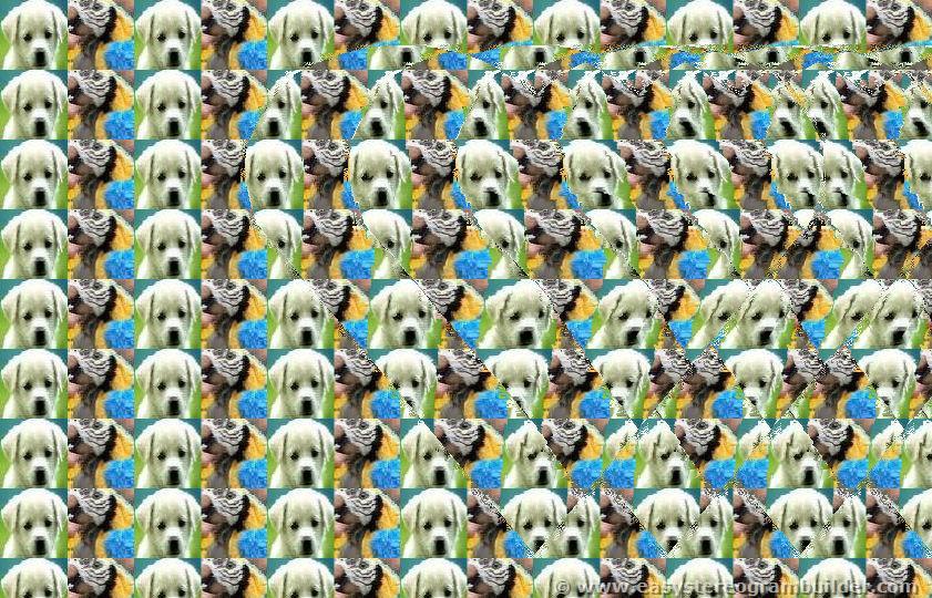 estereogramas 3d max imagenes ocultas en 3d   coraz u00f3n profundo