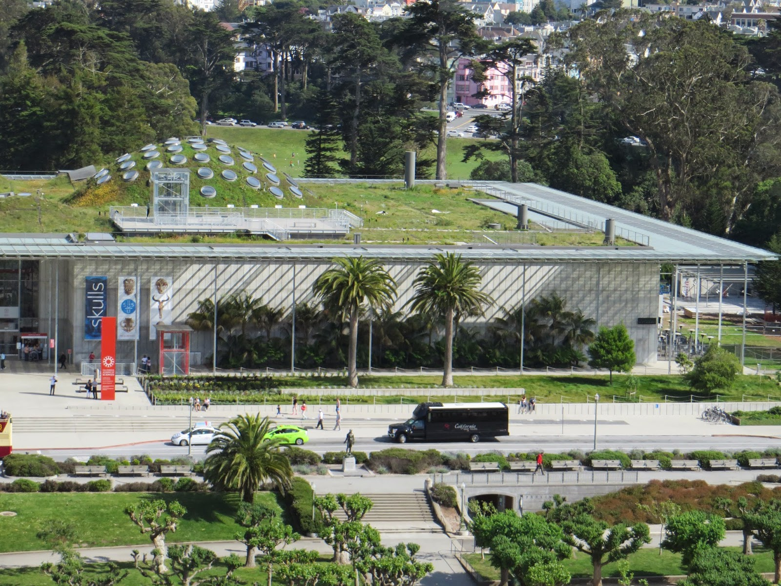 entrevoir california academy of sciences renzo piano building. Black Bedroom Furniture Sets. Home Design Ideas