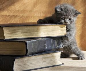 Por el amor a la lectura
