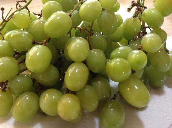 अंगूर के औषधीय गुण