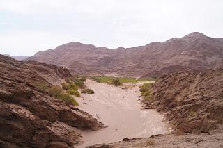 """Nach unseren zwei Tagen im Nationalpark, sind wir vier (also<a href=""""https://www.facebook.com/IV2inAfrica/?fref=ts""""> Angie, Phil</a> und wir) nach Opuwo (Kaokoland Namibia) gefahren, um in der Stadt unsere Vorräte aufzustocken. Alle Boxen und Kanister waren beim verlassen der Stadt bis unters Dach voll und so konnte unsere Reise in die Trockenflüsse Hoarusib und Hoanib los gehen. Wieviel Zeit wir dort verbringen oder wie lange wir brauchen werden, um in Sesfontaine anzukommen, wissen wir nicht.<br /><br /><a name=""""more""""></a>Über die D3707 gehts los Richtung Flussbett. Die Straße ist sehr schlecht und hier oben im Norden von Namibia scheint auch niemand viel Interesse daran zu haben, sie wieder in Stand zu setzen. Da es schon spät ist, schlagen wir uns für die erste Nacht einfach in die Büsche und schlafen dort.<br /><br /><span><b><u>Hoarusib River</u></b></span><br /><br />Am nächsten Morgen geht es dann los. Was wir uns von den Tagen hier erwarten?...Fahrspaß, unberührte Landschaft, wenig Menschen, Wüstenelefanten und auch sonst viele andere Tiere. Auf Fahrspaß mussten wir nicht lange warten, die Einfahrt zum Fluß war schon nicht leicht zu finden und das Flussbett selbst besteht aus Sand, Felsen und vielen Bäumen, bzw. Treibholz. Also Luft aus den Reifen lassen, Allrad rein, Walkytalky an und los. <br /><br /><a href=""""http://3.bp.blogspot.com/-vZFeIPXHQyY/Vj3ShBttAhI/AAAAAAAAFPc/KsnccTuuebo/s1600/2015-11-02%2B21.45.54.jpg""""><img border=""""0"""" src=""""http://3.bp.blogspot.com/-vZFeIPXHQyY/Vj3ShBttAhI/AAAAAAAAFPc/KsnccTuuebo/s320/2015-11-02%2B21.45.54.jpg""""/></a> <a href=""""http://3.bp.blogspot.com/-lwFb0LuFi-s/Vj3SVT9eB5I/AAAAAAAAFPU/WhGQZCQY8As/s1600/DSC00631.JPG""""><img border=""""0"""" src=""""http://3.bp.blogspot.com/-lwFb0LuFi-s/Vj3SVT9eB5I/AAAAAAAAFPU/WhGQZCQY8As/s320/DSC00631.JPG""""/></a> <a href=""""http://2.bp.blogspot.com/-JC87YdW-Lwc/Vj3UgivYovI/AAAAAAAAFQI/YZ9dolVC4F4/s1600/_MG_0001.JPG""""><img border=""""0"""" src=""""http://2.bp.blogspot.com/-JC87YdW-Lwc/Vj3UgivYovI/AAAAAAAAFQI/YZ9dolVC4"""