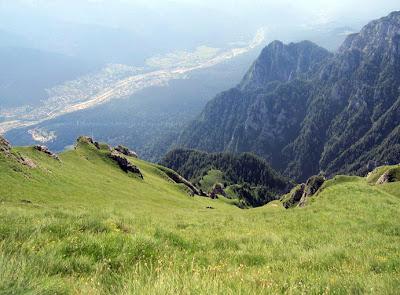 Picturesque fields with mountain flora, atop of Caraiman Peak, Romania