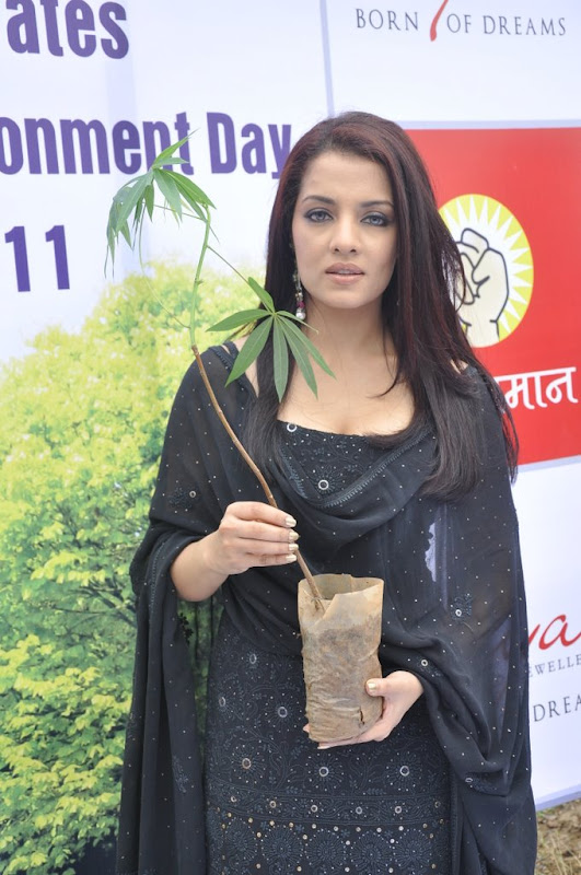 Celina Jaitley Hot Stills  Diya Diamonds World Environment Day navel show