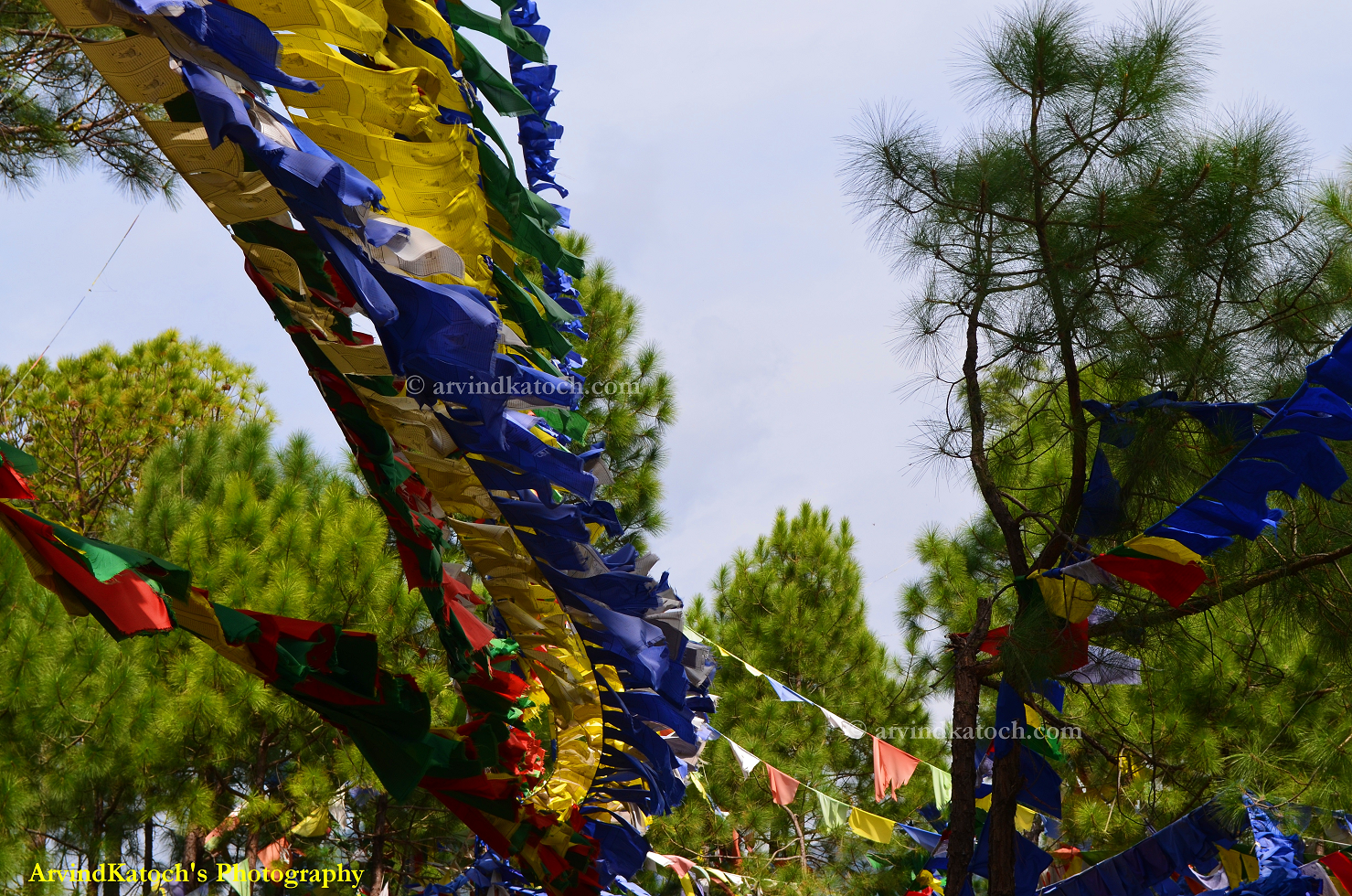 http://2.bp.blogspot.com/-jMz0rae0ovs/UIqAZ6PTW7I/AAAAAAAALGc/gOanHM1xy4s/s1600/TibetanchantingflagsLow.png