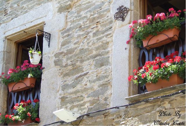 As janelas não tem de ser monótonas, ou apenas janelas. Uma fotografia com cor onde as janelas são locais de cor e alegria.  Onde a objetiva capta as cores vivas das flores com o gélido das paredes com um romper de um raio de sol.