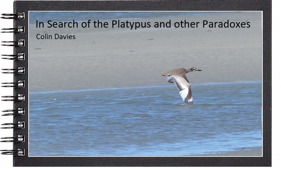 In search of the platypus and other paradoxes