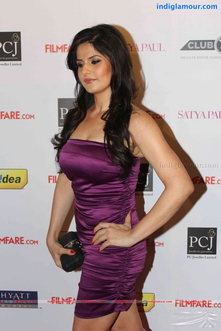 Zarine Khan unseen hottest pics collection