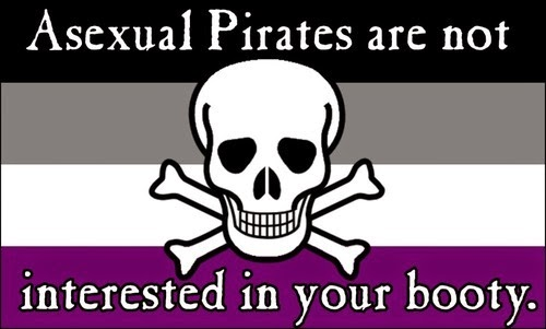 "Image of a flag with a skull and crossbones that says ""Asexual Pirates are not interested in your booty."""