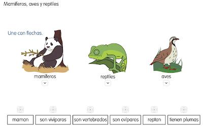 http://primerodecarlos.com/SEGUNDO_PRIMARIA/diciembre/Unidad5/actividades/cono/animales.swf