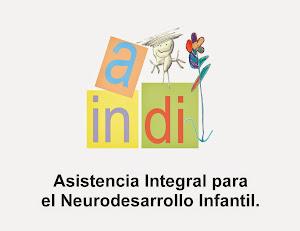 A.I.N.D.I  Asistencia Integral para el Neurodesarrollo Infantil