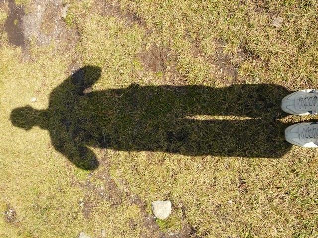 agora somos sombra...