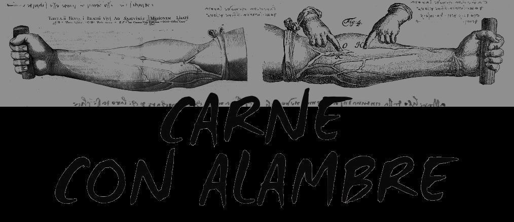 CARNE CON ALAMBRE