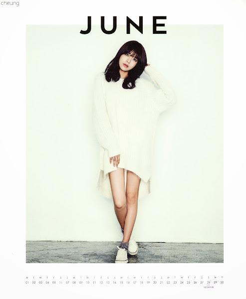 snsd sooyoung calendar 2015
