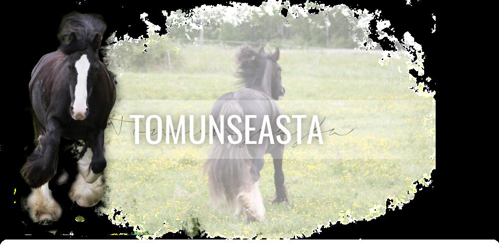Tomunseasta