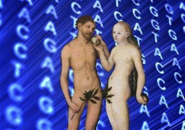 Εντόπισαν τον «γενετικό Αδάμ»