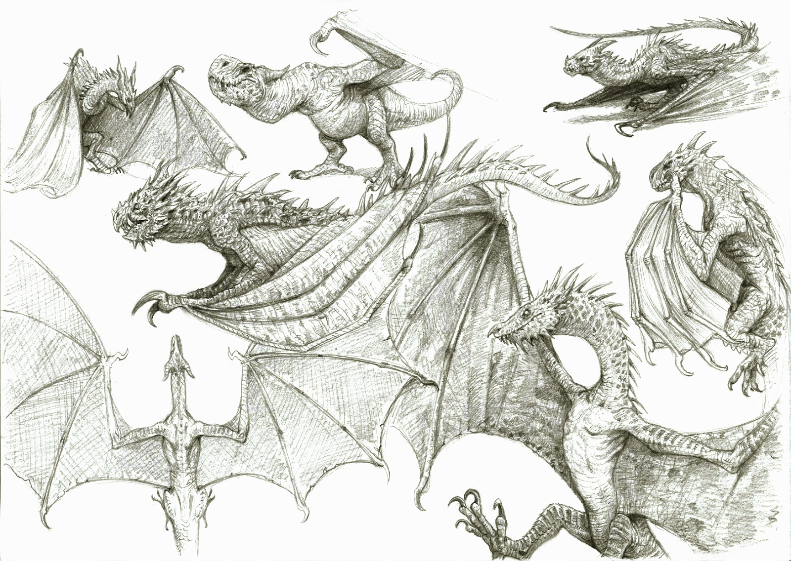 Easy Pictures To Paint Of Skyrim Dragons
