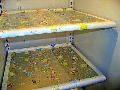http://www.amandathevirtuouswife.com/2012/01/pressn-seal-fridge-shelves.html