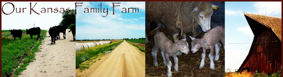 Our Kansas Family Farm