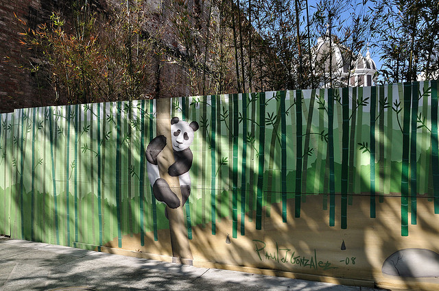 Bamboo Themed Home Decor