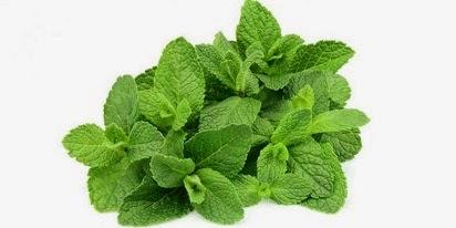 manfaat daun mint untuk wajah,daun mint untuk kecantikan,untuk diet,untuk rambut,untuk kulit wajah,khasiat daun mint,bahaya mint,