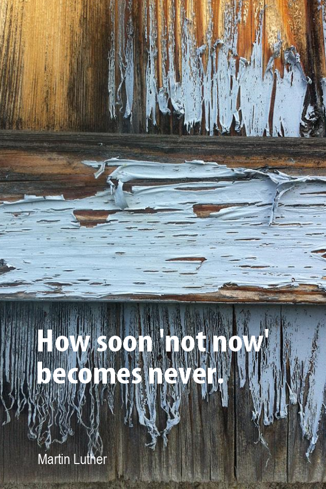 visual quote - image quotation for PROCRASTINATION - How soon 'not now' becomes never. - Martin Luther