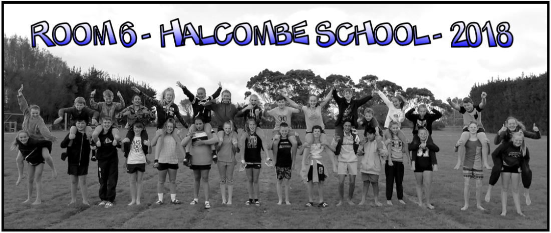Room 6 - Halcombe School - 2018