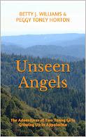 Unseen Angels