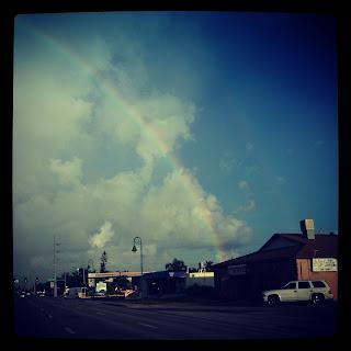 Photo of Wolfelicious Rainbow