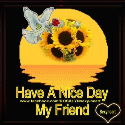Image result for have an nice day dear friends