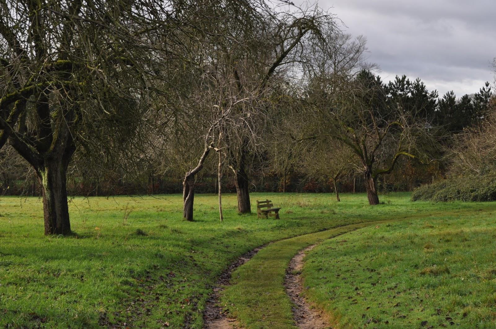 Jardin de la Sauvagine: Petite balade en solitaire à la Villa ...