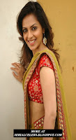 Richa Pallod in low hip saree