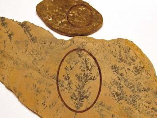 WY Sagebrush Jasper and Bronzite