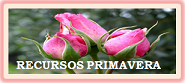 RECURSOS PRIMAVERA