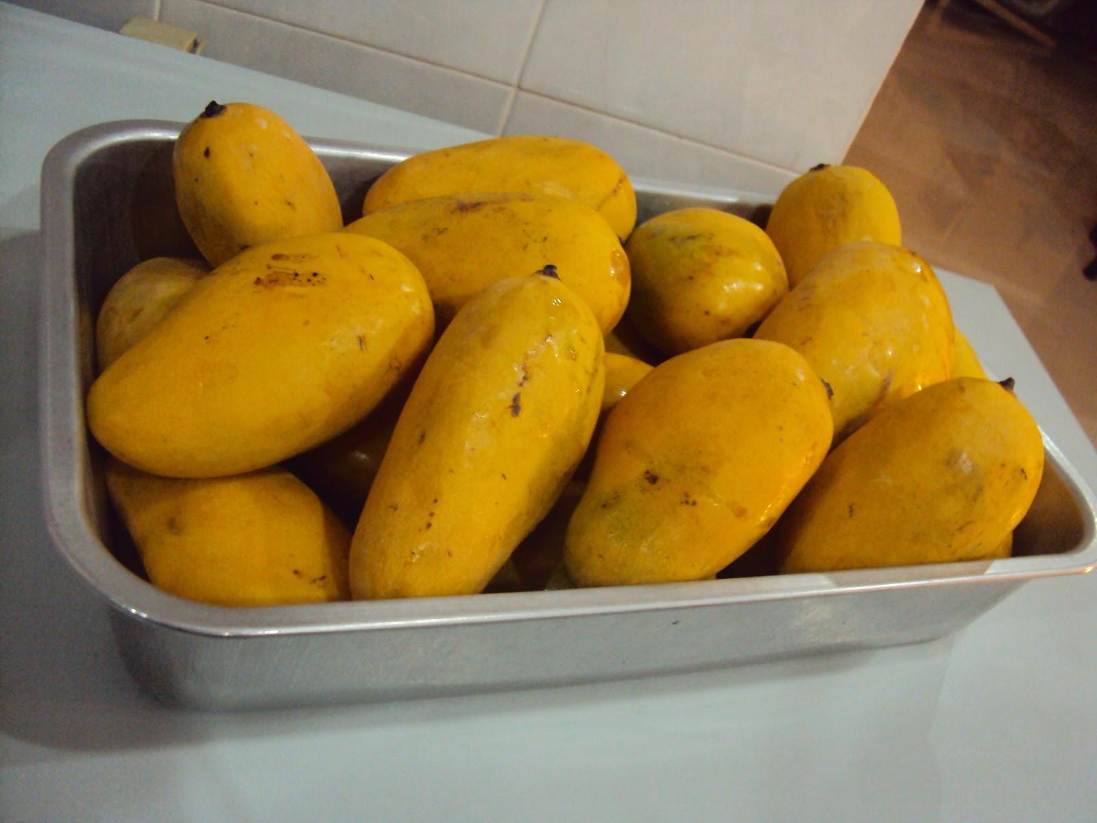 Thailand Rainbow Mango Chokanan Mangoes From Thailand