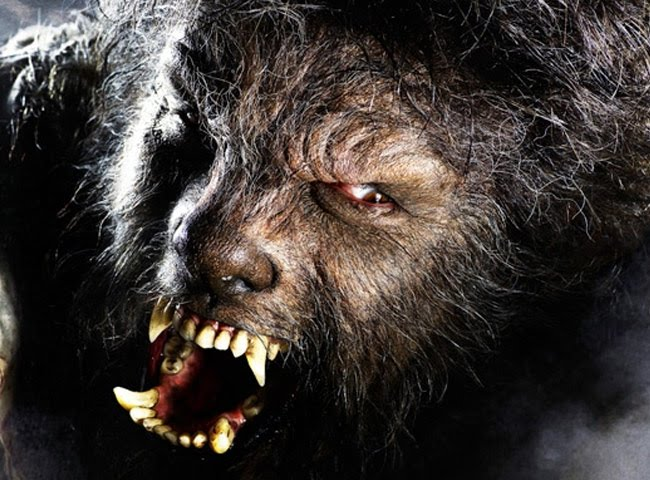 HANK HOKAMP'S JOURNALISM!: THIS IS A REAL WEREWOLF!