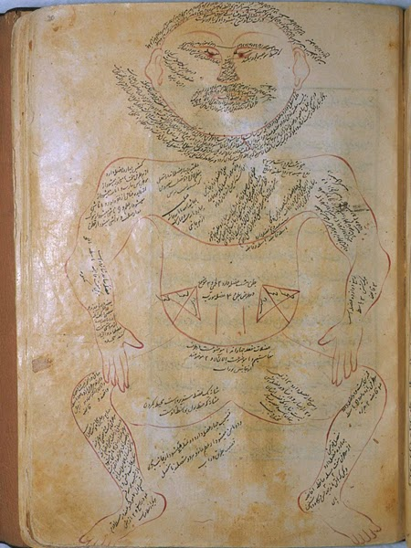 The anatomy of the human body, Mansur ibn Ilyas, 1480.