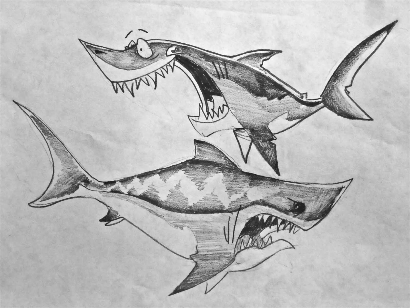 Shark Drawing In Pencil